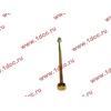 Болт центральный рессоры задней без бобышки H2/H3/SH HOWO (ХОВО) WG9638520018+013 фото 3 Петрозаводск
