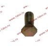 Болт пустотелый М12х1,25 (штуцер топливный) H HOWO (ХОВО) 90003962607 фото 3 Петрозаводск