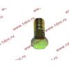 Болт пустотелый М10х1,0 (штуцер топливный) H HOWO (ХОВО) 81500070054 фото 3 Петрозаводск